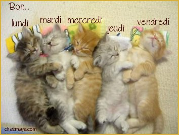 http://imagesdecoforums.i.m.pic.centerblog.net/rimq8dfu.jpg